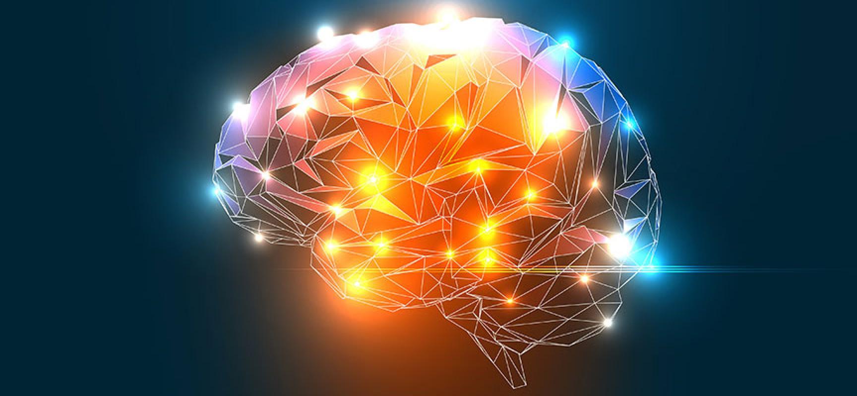 تصویر از نکات مهمی درباره حافظه و یادگیری در انسان