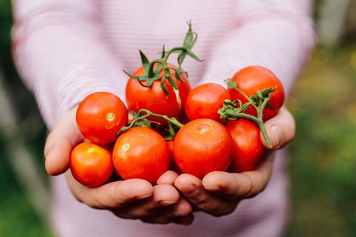 تصویر از بهبود کیفیت اسپرم با گوجه فرنگی