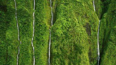 تصویر از بلندترین آبشار دنیا؛ ۱۰ آبشار حیرتانگیز دنیا