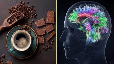 تصویر از 8 غذا و نوشیدنی که عامل اصلی میگرن هستند