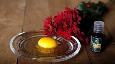 روغن تخم مرغ